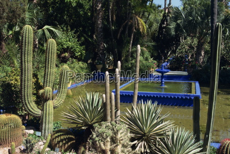 cacti and fountain in the majorelle