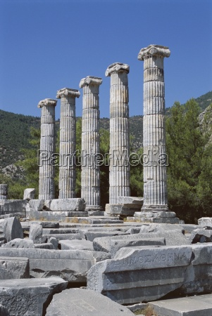 columns in ruins of temple of
