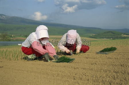 two women in bonnets planting onions