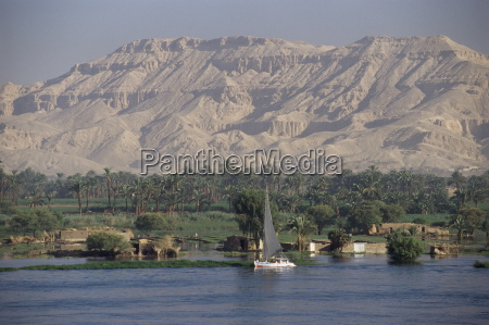 felucca on the river nile looking