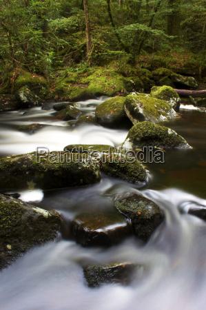 river teign dartmoor national park devon