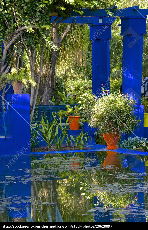 farbige, töpfe, und, pflanzen, im, wasserbecken, in - 20628897
