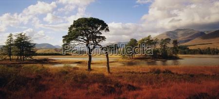 loch tulla western highlands highlands region