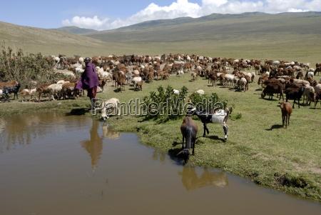 ngorongoro conservation area unesco world heritage
