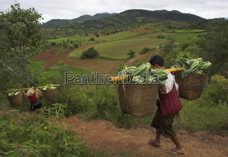 two men carrying heavy loads on