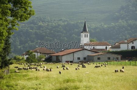 countryside near st jean pied de