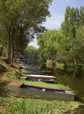 tranquil scene of boats moored on