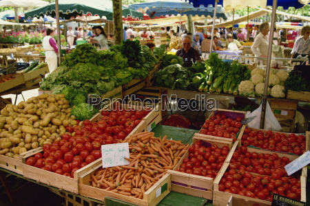 vegetables, including, carrots, , tomatoes, and, lettuce, - 20645429