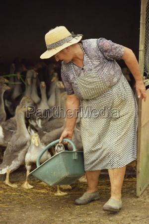 portrait of a woman feeding geese