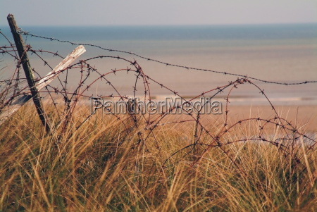 utah beach where american forces landed