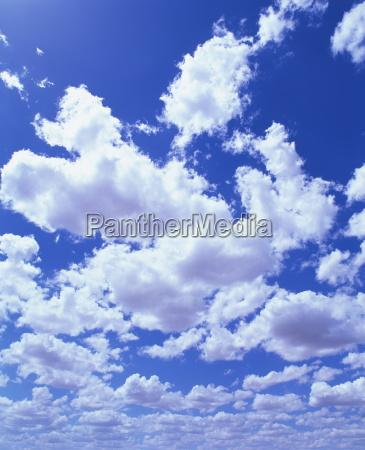 puffy weisse haufenwolken in blauem himmel