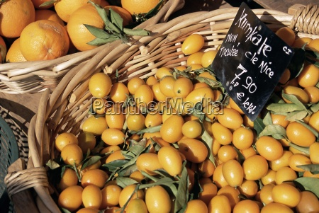 kumquats for sale on the market