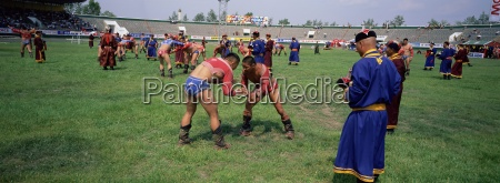 wrestlers at tournament naadam festival tov