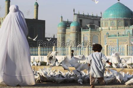 lady in burka fuetterung beruehmten weissen