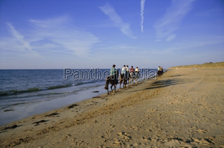 conche des baleines horseriders on beach