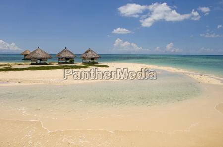 pandanon island nalusuan marine sanctuary cebu