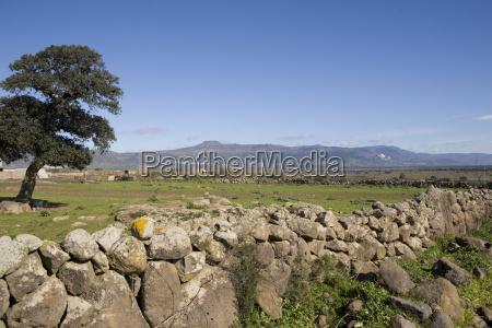 abbasanta high plateau sardinia italy europe