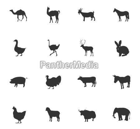 bauernhof tiere icon set