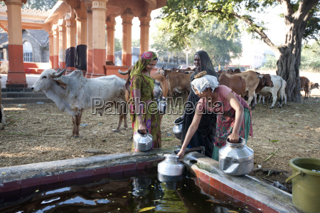 women filling water pots in the