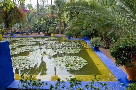 jardin majorelle marrakech morocco north africa