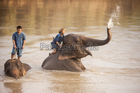 four seasons elephant camp north thailand