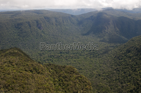 aerial view of mountainous rainforest in