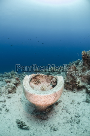 collection of toilet bowls from shipwreck