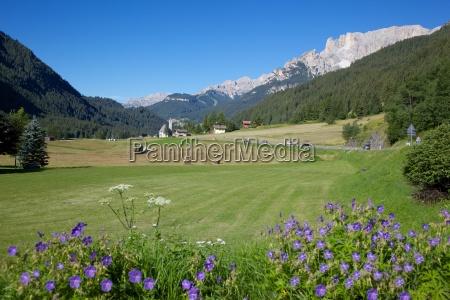 hay field near canazei canazei trentino