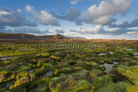 seaweed covered rocks at suise on