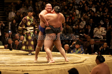 two sumo wrestlers pushing hard to