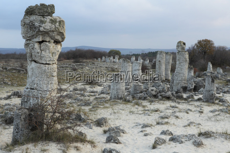 fahrt reisen historisch geschichtlich denkmal monument