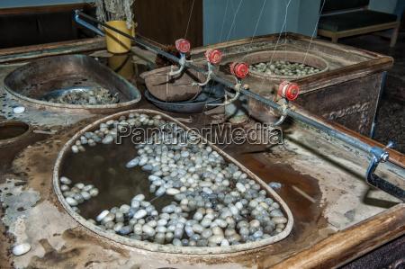 gewinnung von seidenfaeden aus kokons in
