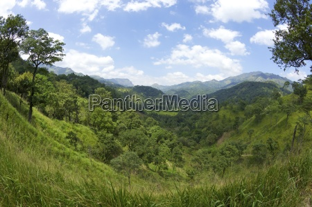hill country near ella sri lanka