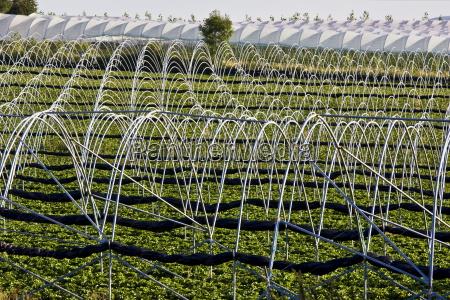 fahrt reisen landwirtschaftlich farbe landwirtschaft ackerbau