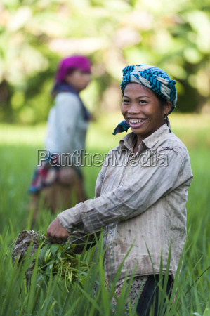a girl clears weeds from the