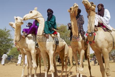 gerewol allgemeines wiedersehen in westafrika fuer