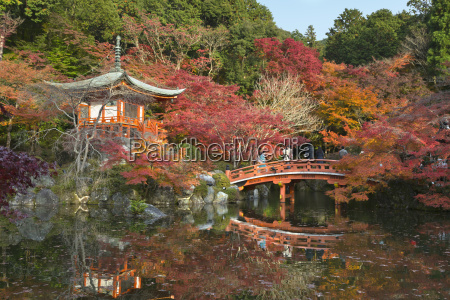 japanese temple garden in autumn daigoji