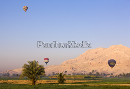 hot air balloons suspended over green