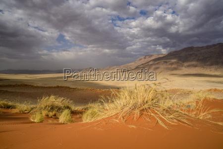 wueste oednis afrika namibia horizontal outdoor