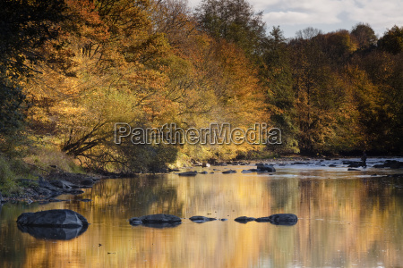 beautiful autumn colours reflecting in the