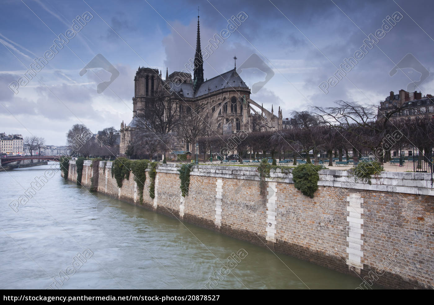 kathedrale, notre, dame, de, paris, paris, frankreich, europa - 20878527