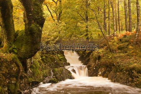 the waters of launchy gill in