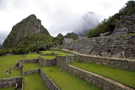 agricultural terraces machu picchu peru peruvian