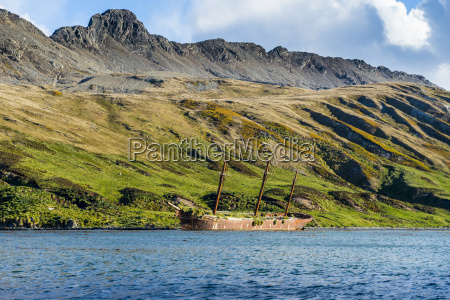 stranded old whaling boat ocean harbour