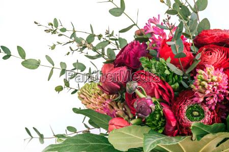 ranunkulyus bouquet von roten blumen auf