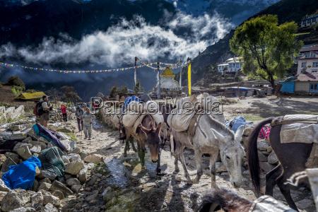 nepal khumbu everest region namche bazaar