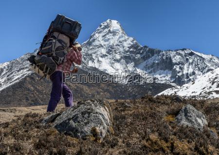 nepal himalaya khumbu ama dablam carrier