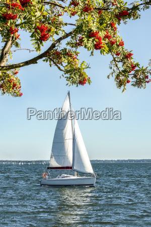 polen masuren segelboot auf dem niegocin