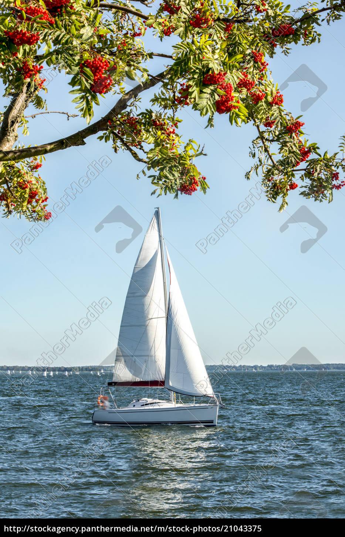 polen, masuren, segelboot, auf, dem, niegocin-see - 21043375