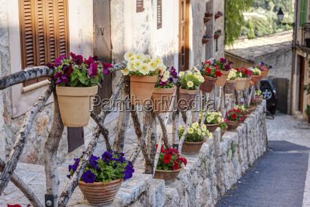 spanien, mallorca, topfpflanzen, dekoration, an, häusern, in, der - 21044575